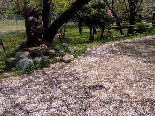 桜大山160409-3.JPG