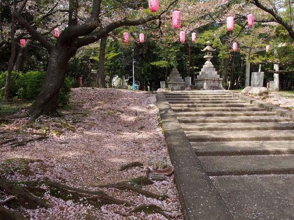 桜大山160409.JPG