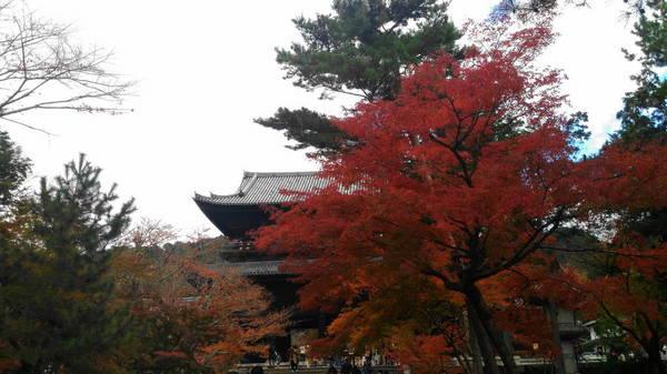 0009南禅寺1.JPG