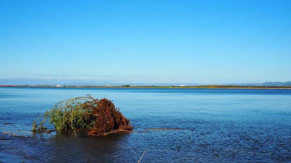 0012河口11007.JPG